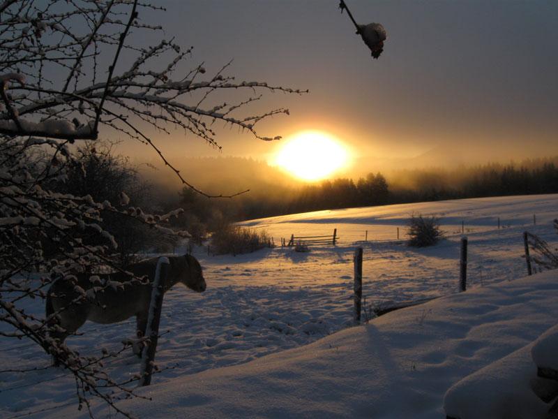 Coucher du soleil derrière la laiterie